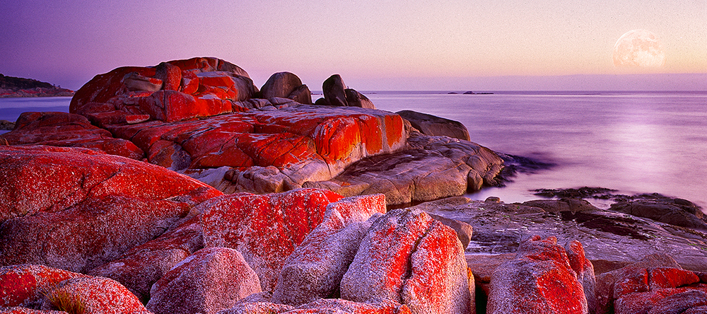 Bay Of Fires Photo Tour