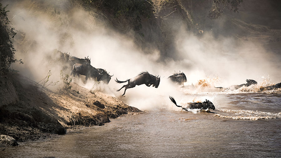 Best photo tour in africa